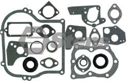 480-028-BR  GASKET SET WITH OIL SEALS FITS 5 HP HORIZONTAL ENGINES